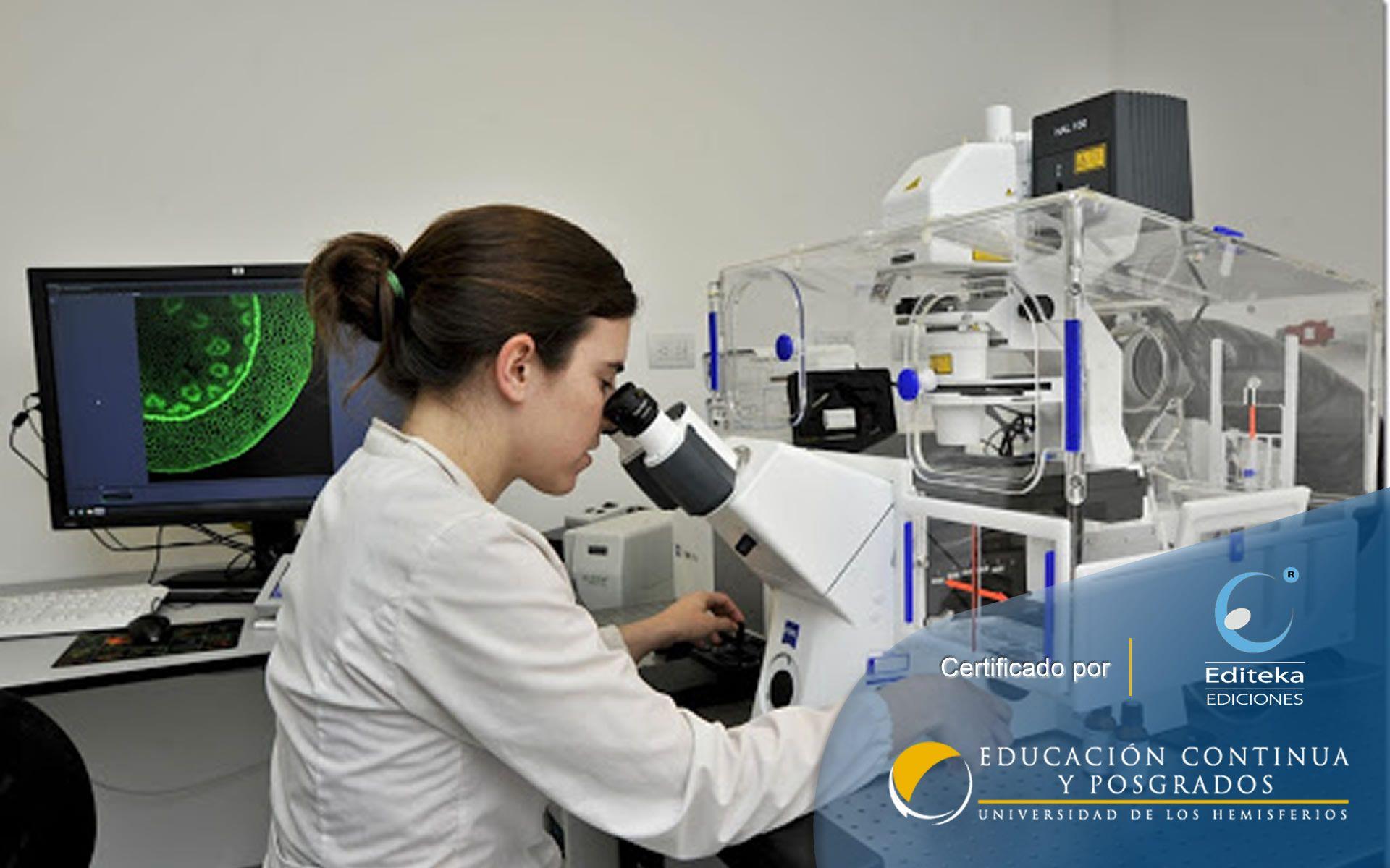 Certificación en Metodología de la Investigación Científica