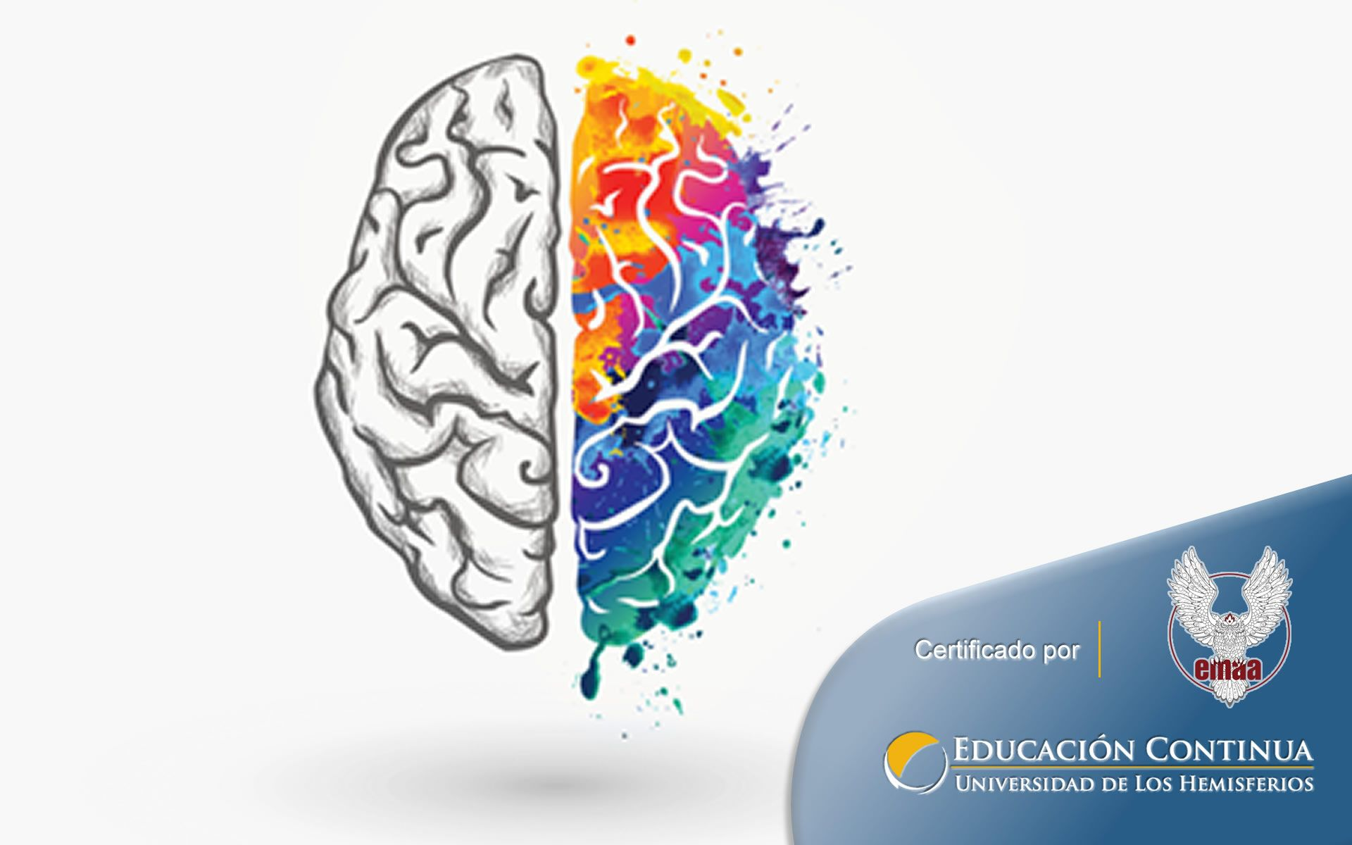 Certificación online para Inteligencia Emocional