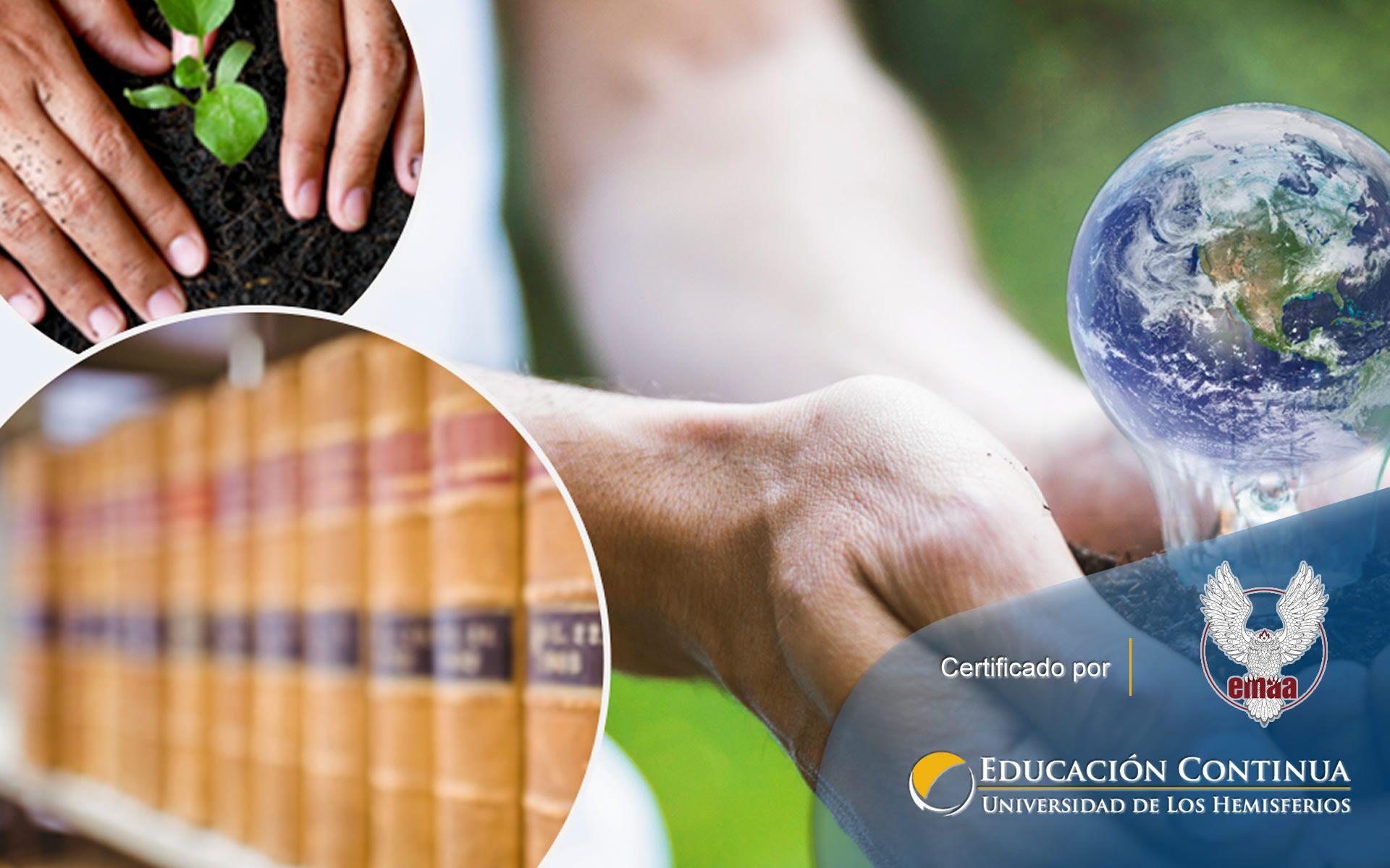 Certificación en Normativa Ambiental Vigente