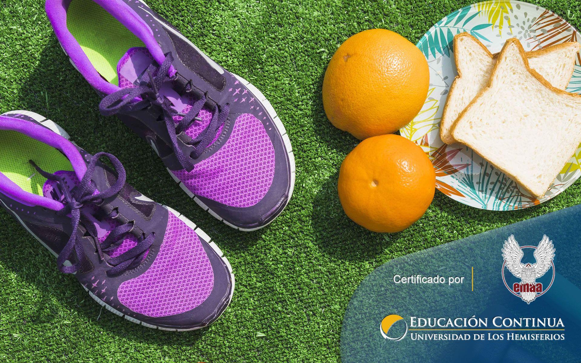 Certificación online para La Nutrición y su vinculo con la Fisioterapia