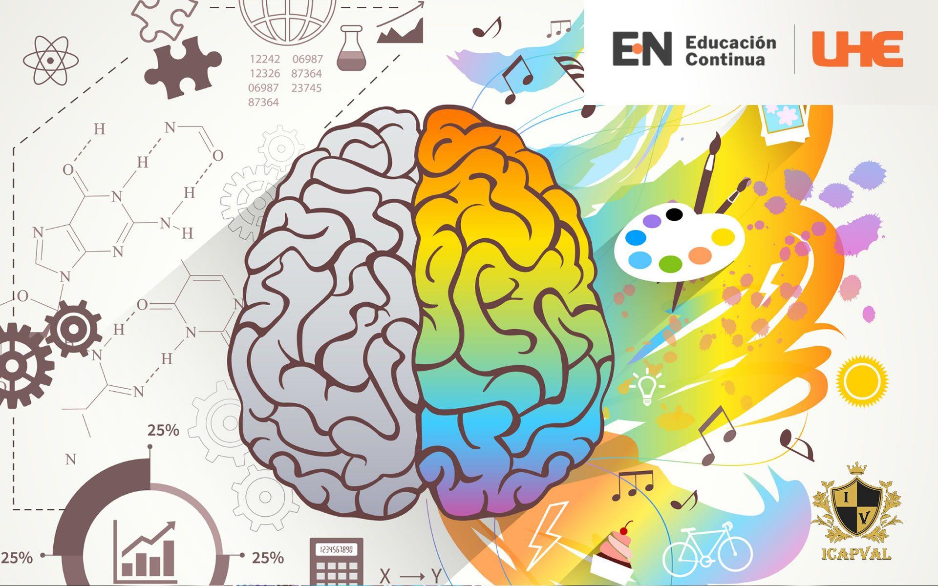 Certificación en Cerebro y Cognición