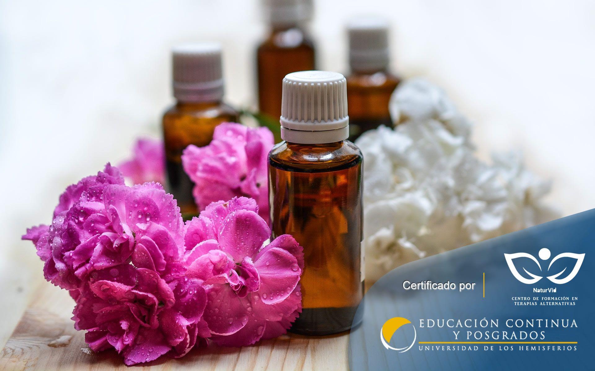 Certificación Online de Terapia Floral Flores de Bach